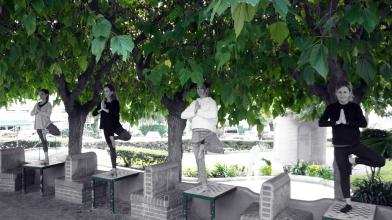 Yoga Estepona - Tree pose - Vriksasana